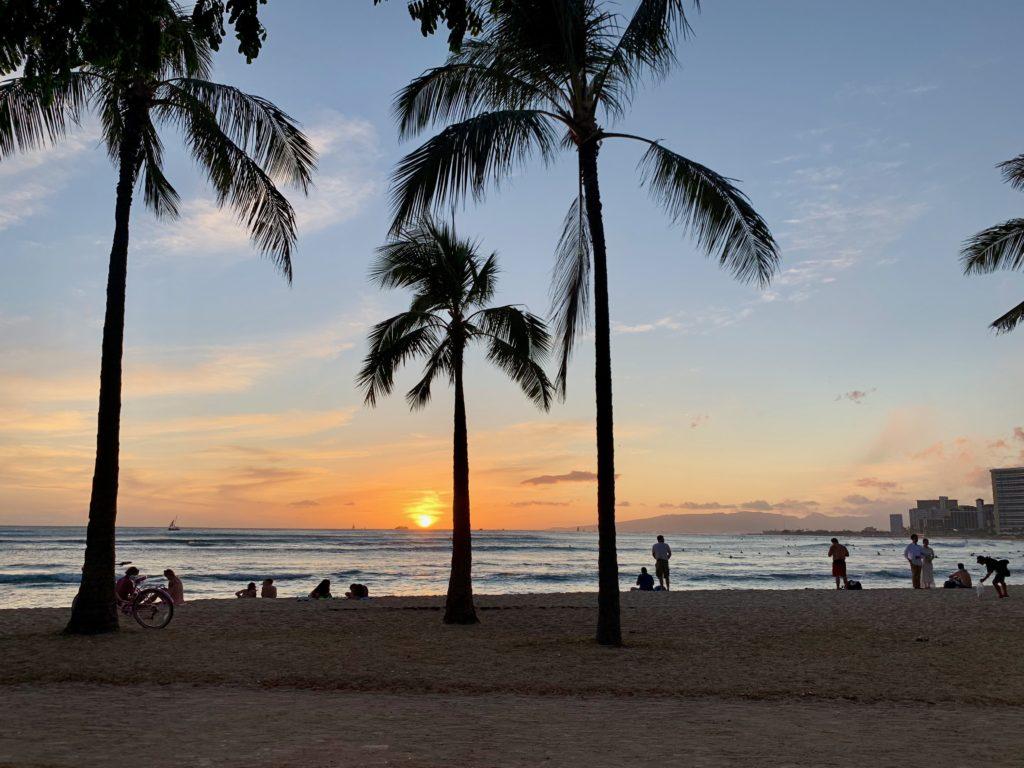 夕日とヤシの木と夕日をビーチで眺める人々。