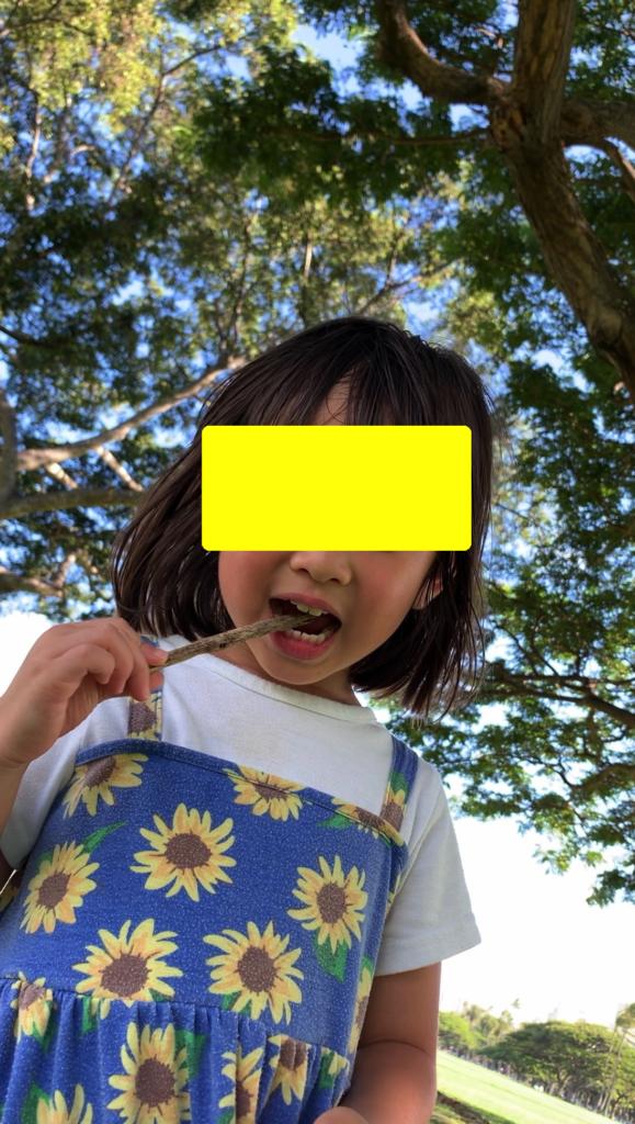 木の枝で歯ブラシする娘