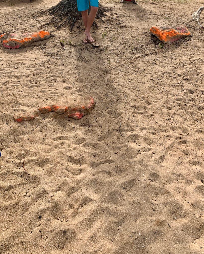 目立つ色で塗装されたビーチの石