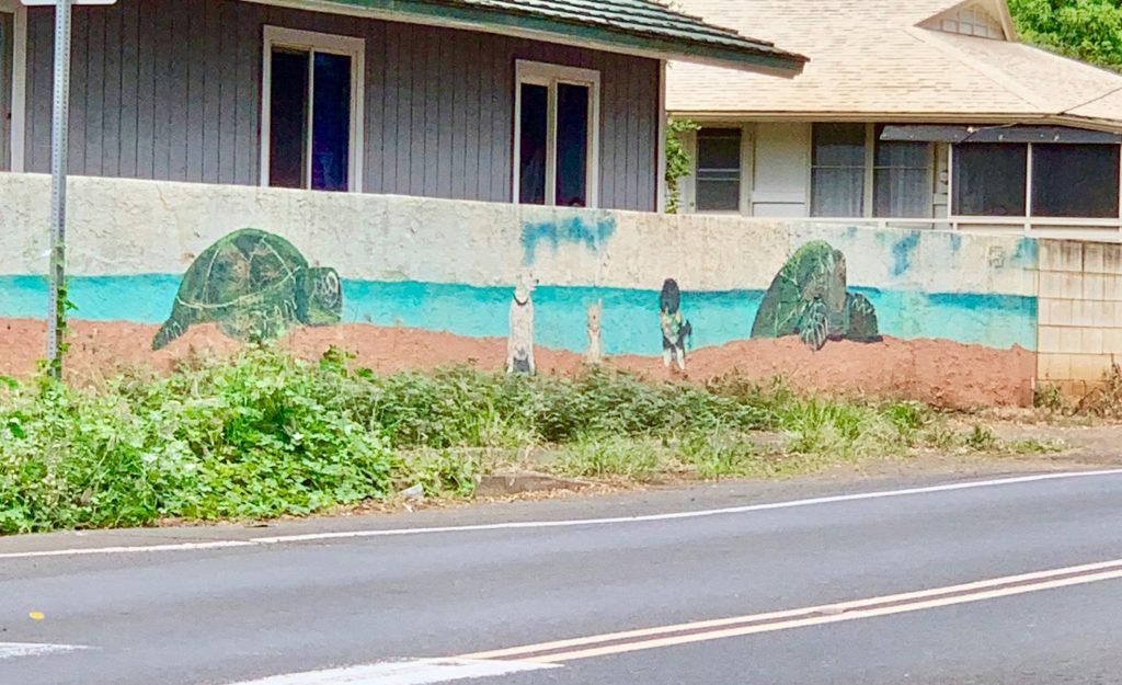 塀に描かれたカメの絵