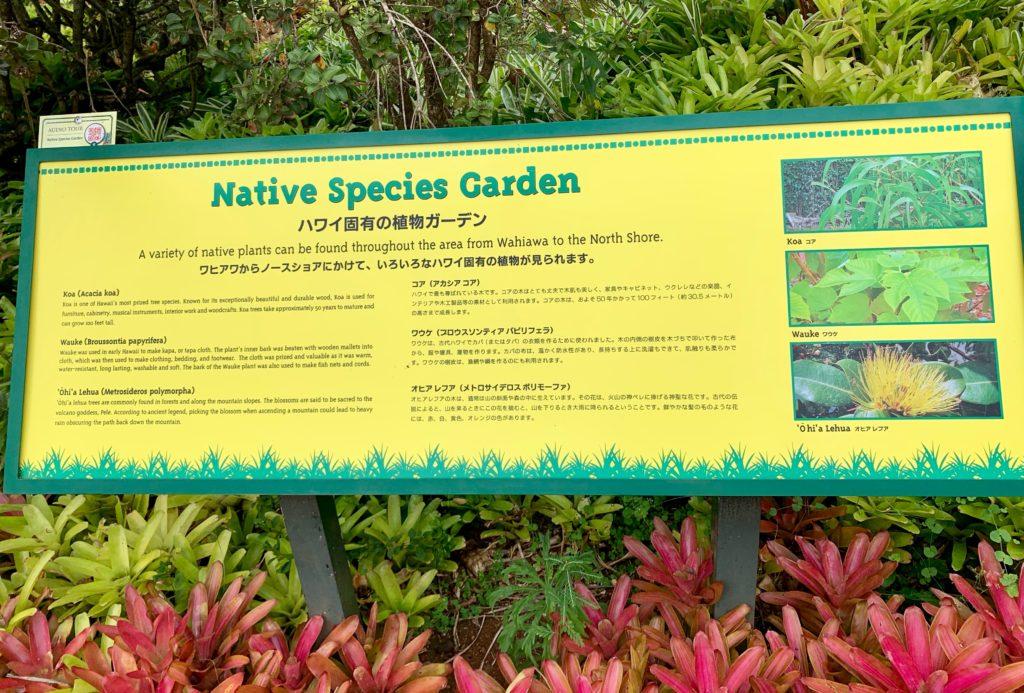 ハワイ固有の植物ガーデンを紹介した看板
