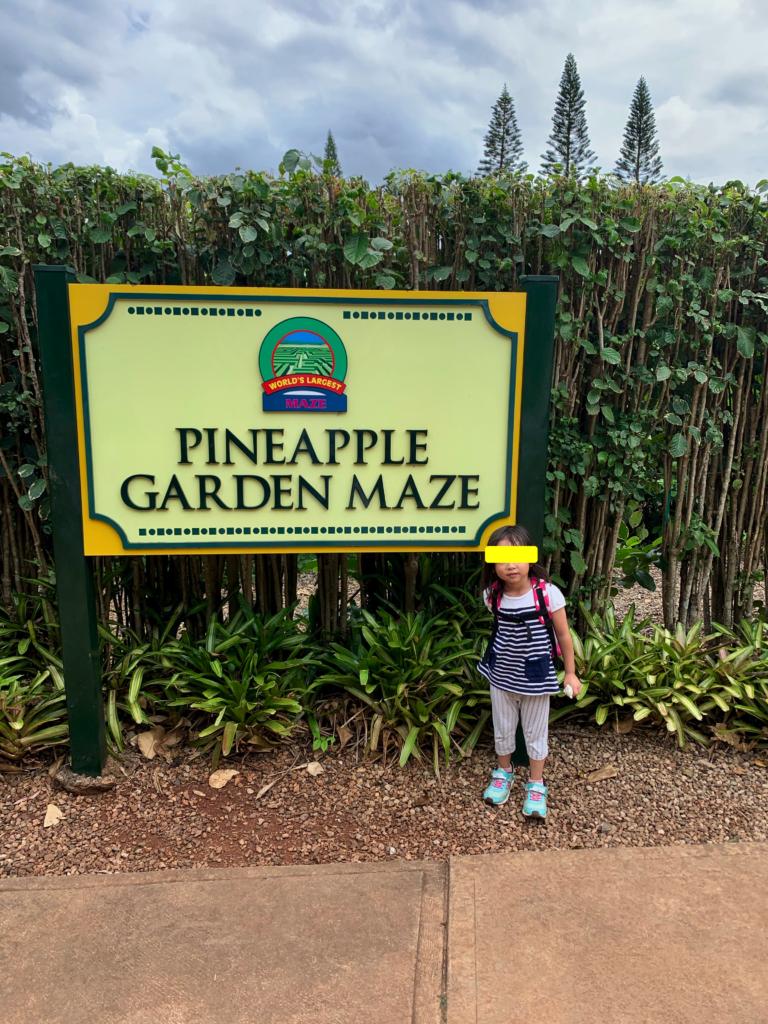 世界一大きな迷路としてギネス認定されているパイナップルガーデンメイズ。