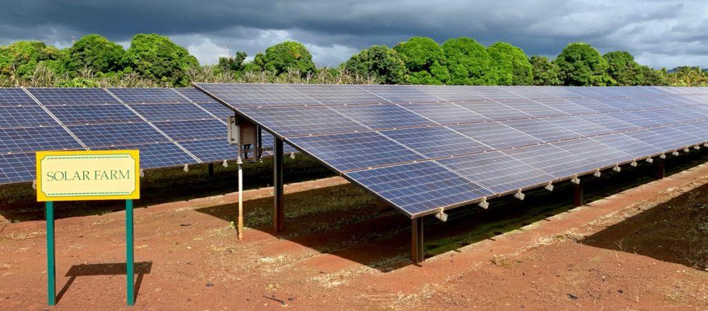 ソーラーパネル畑
