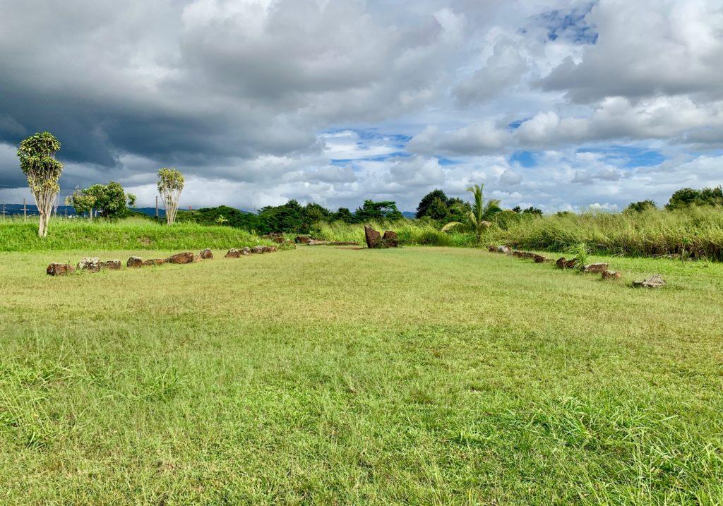 左右に石が並ぶ芝生