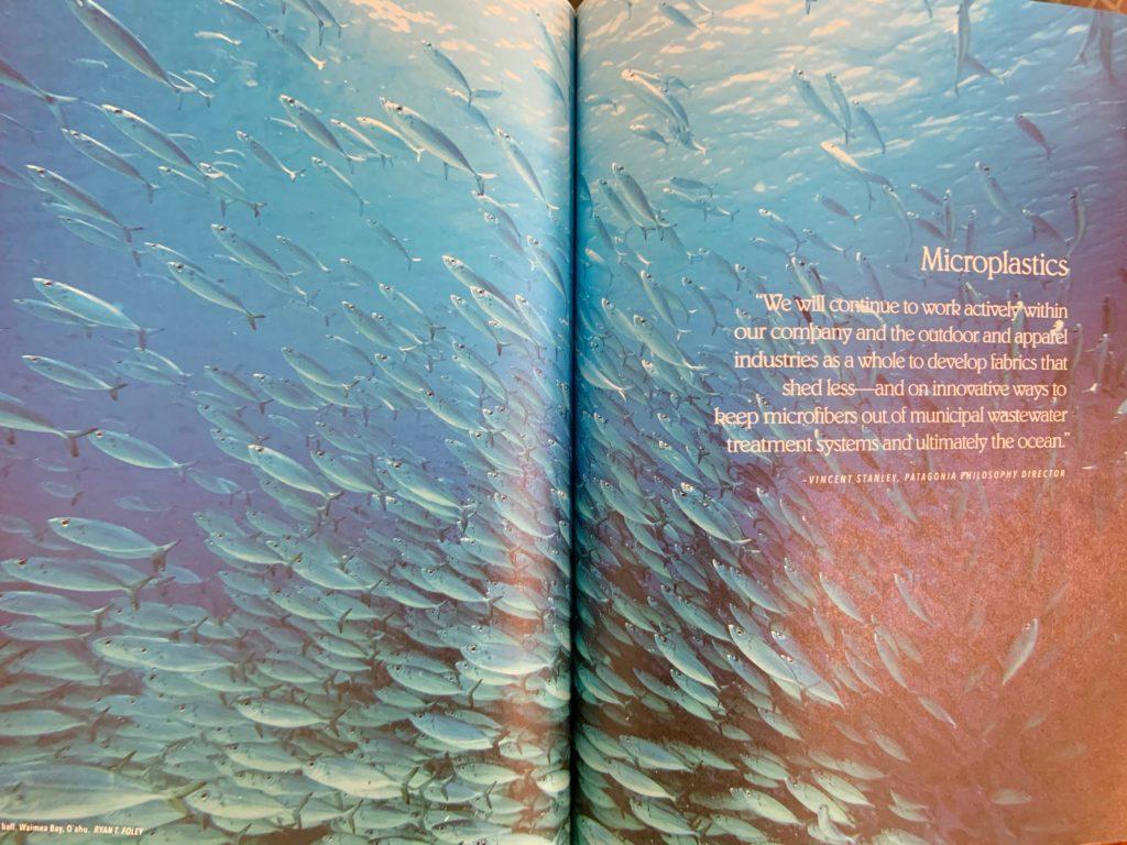 パタゴニアフリーブックの一ページ 見開きで写真が大きく載っている。