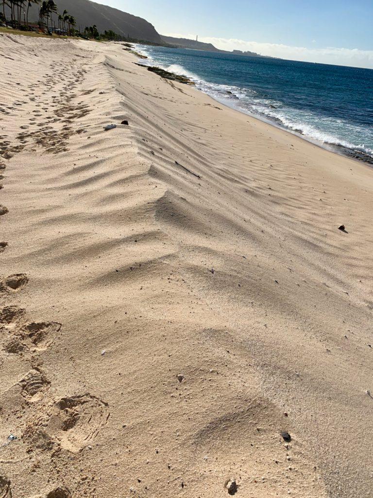 尾根状に盛り上がった砂浜