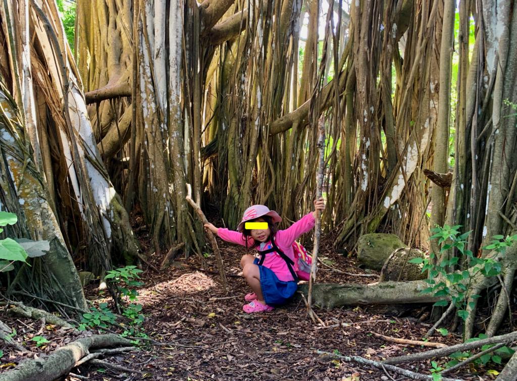 バニヤンツリーに囲まれた場所で木の枝を両手に持つ娘
