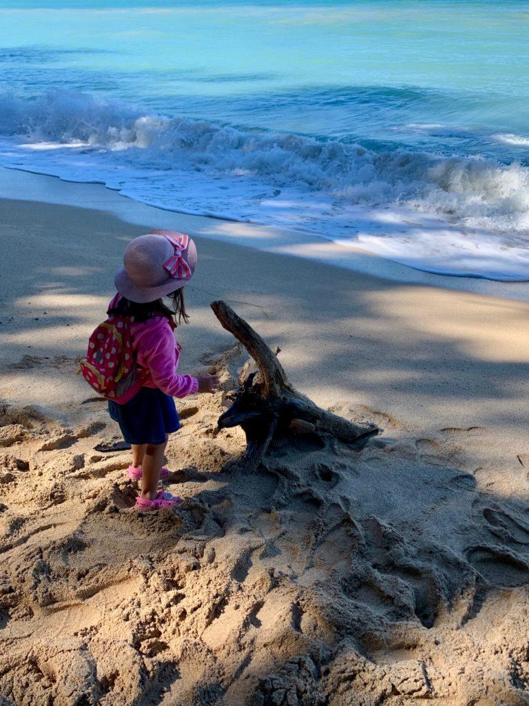 大きな流木と娘