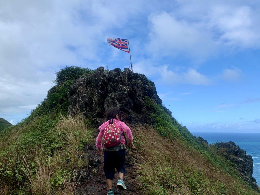 ハワイ国旗のある山