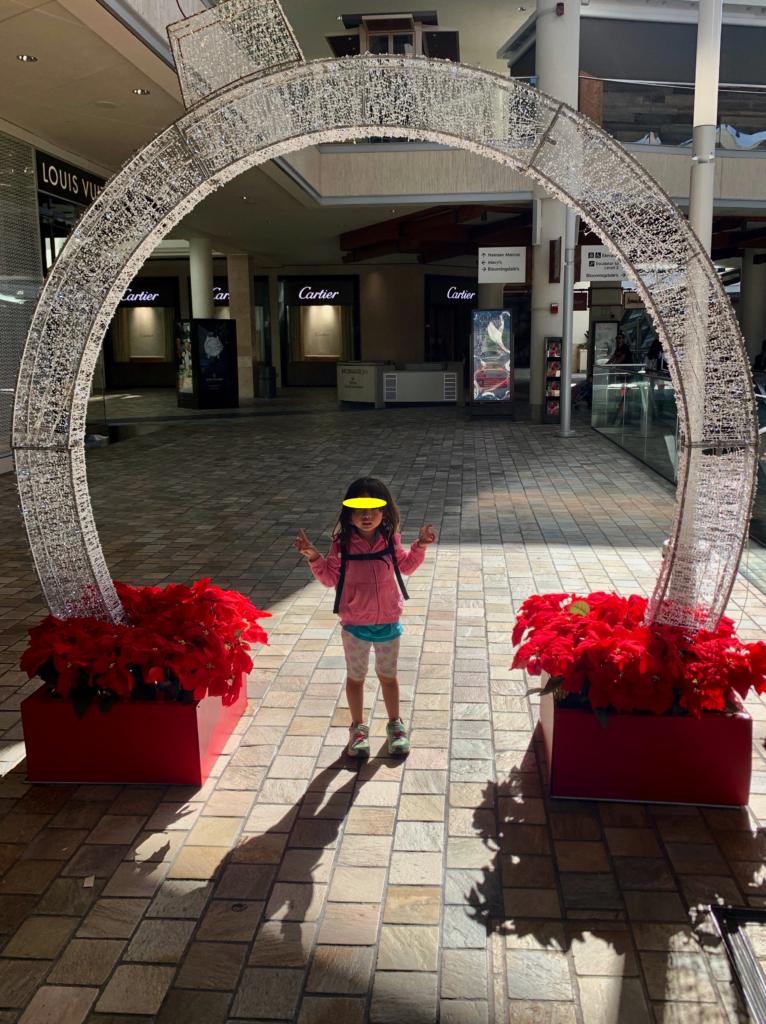 クリスマス風の装飾と写真をとる娘