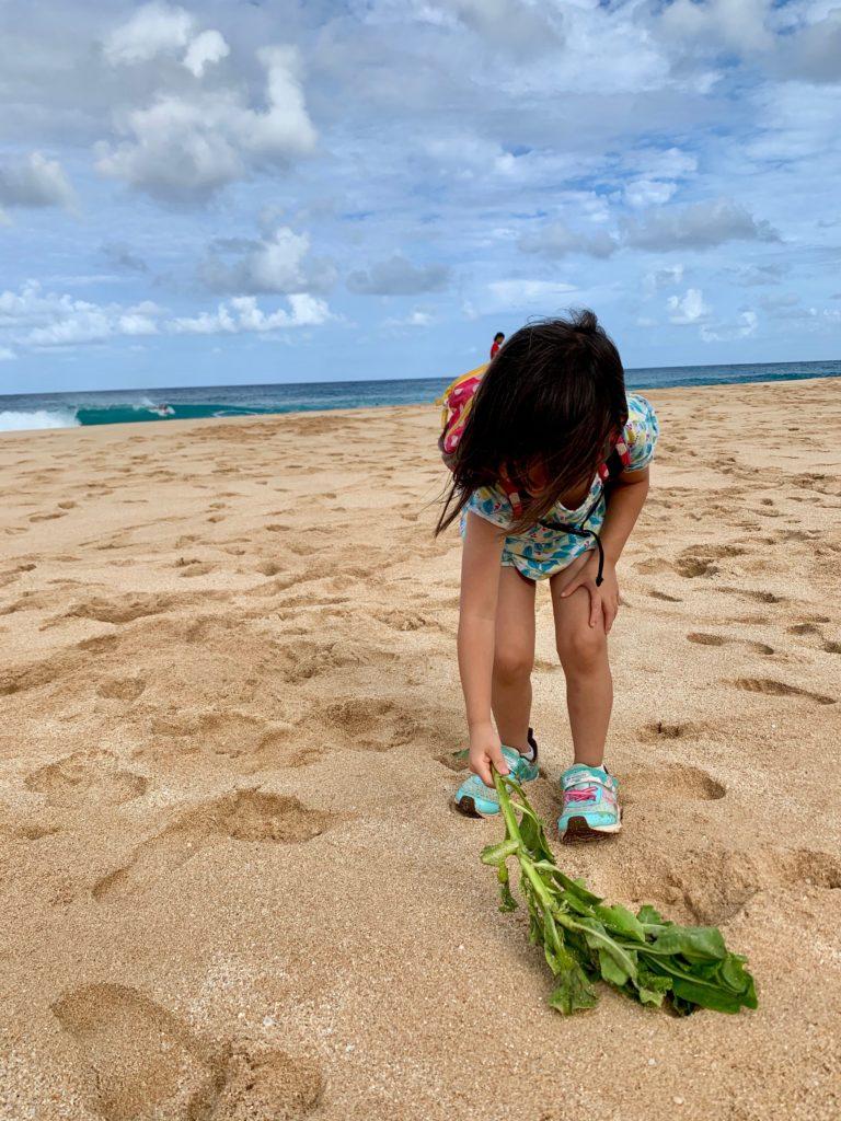 砂浜を葉のホウキで掃除する娘