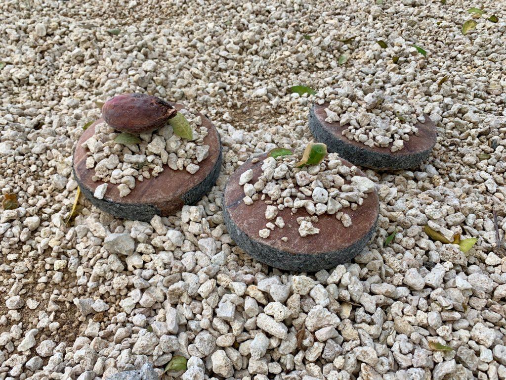 本来ボウリングのように転がして使う円盤で、ケーキを作った 石や木ノ実、葉っぱが乗っている