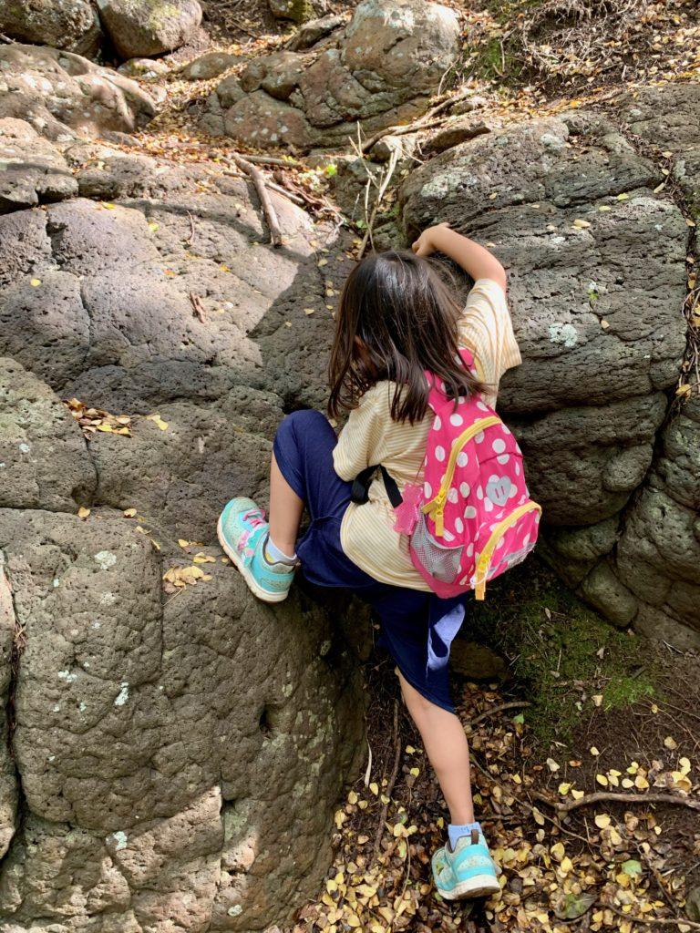 岩を登る娘
