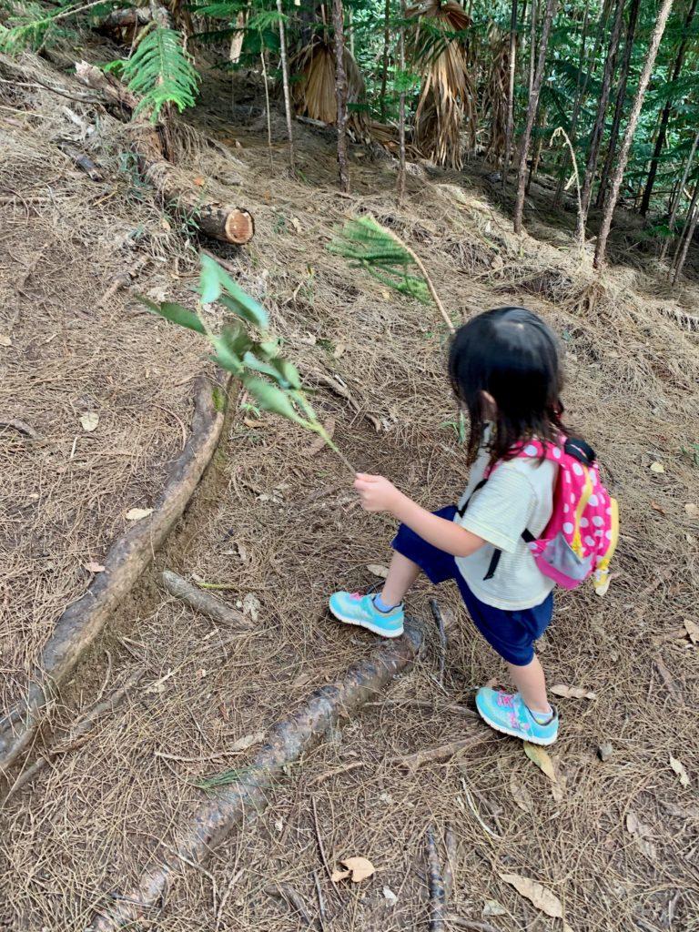 緑の葉のついた枝を両手に持ってトレイルをする娘