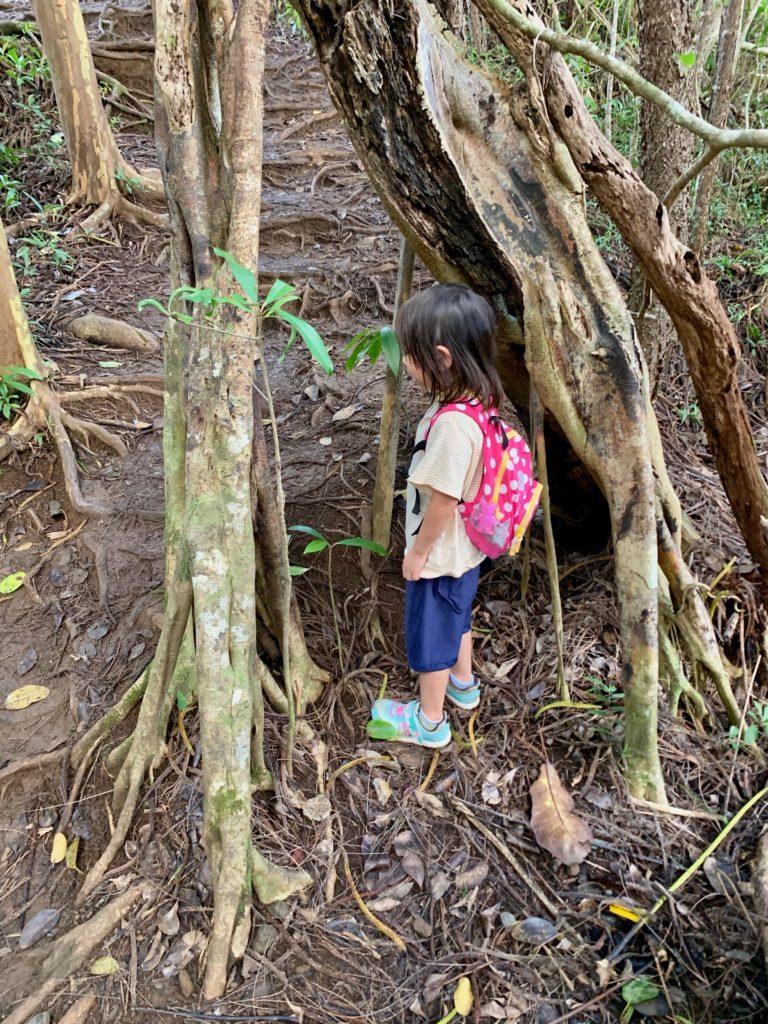 木のトンネル(小)と娘