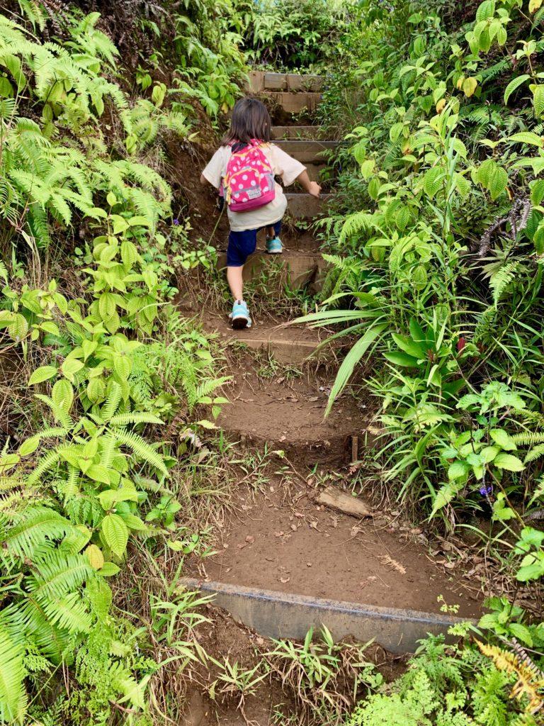 急な階段を登る娘