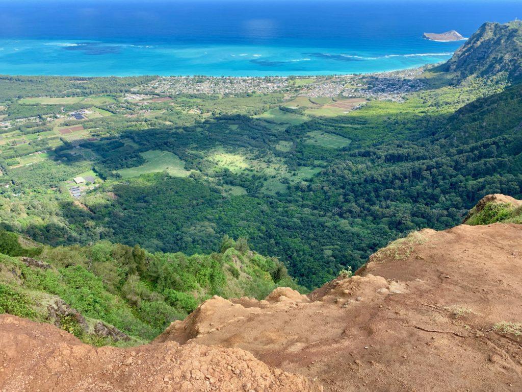 頂上からの景色 崖の下もきれいな緑が広がっている