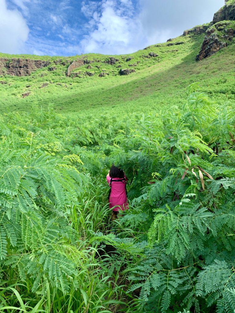 トレイルロードは狭く、娘は草に埋まっているみたいに見える。