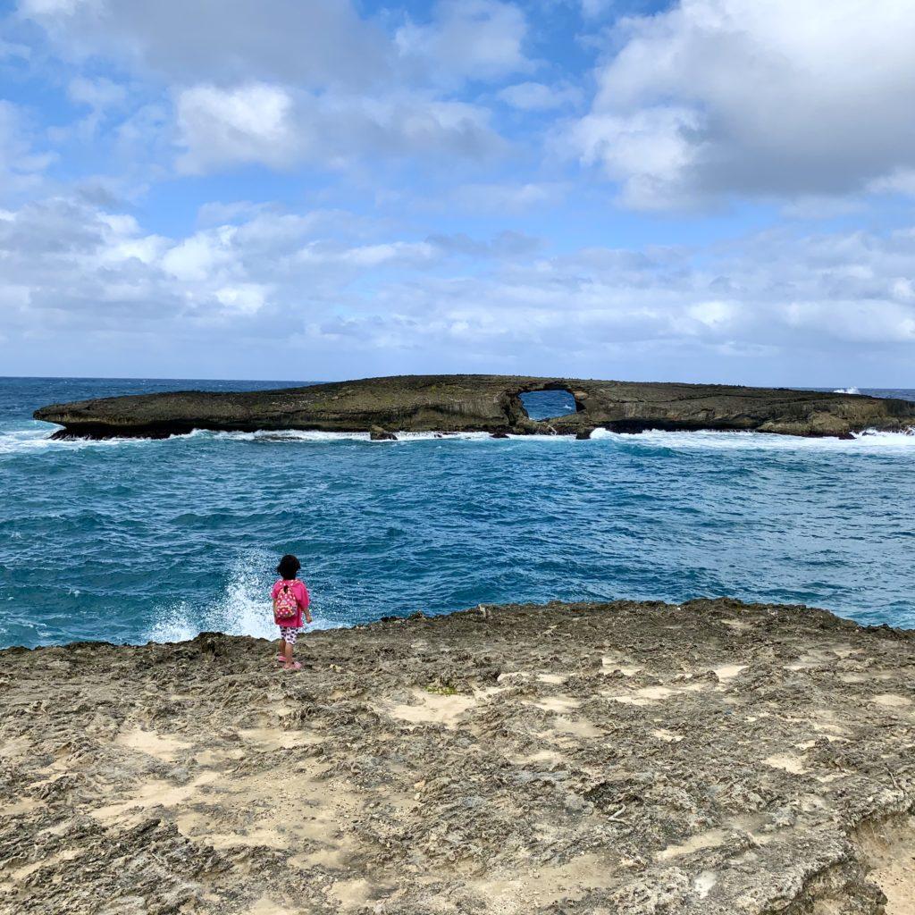 クジラのようなワニのような形をした長い島を見る娘