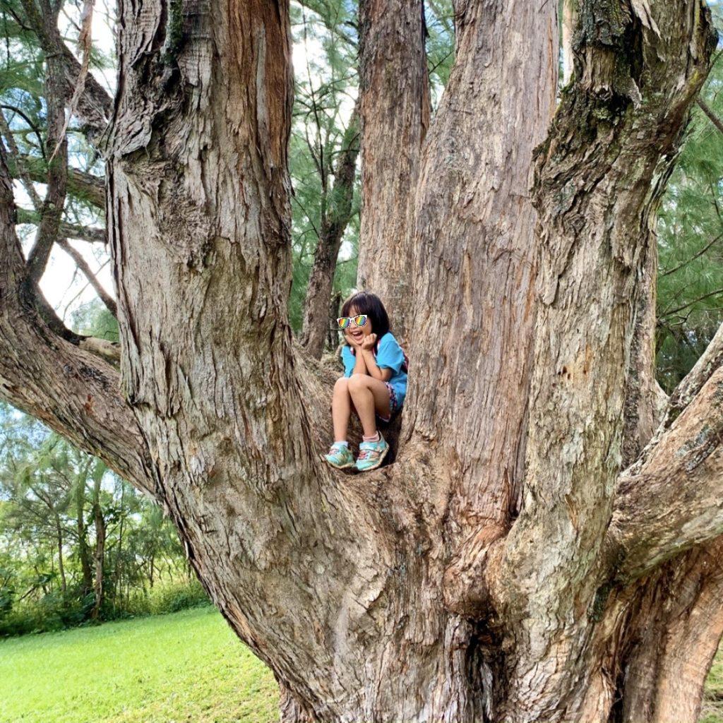 木に座る娘