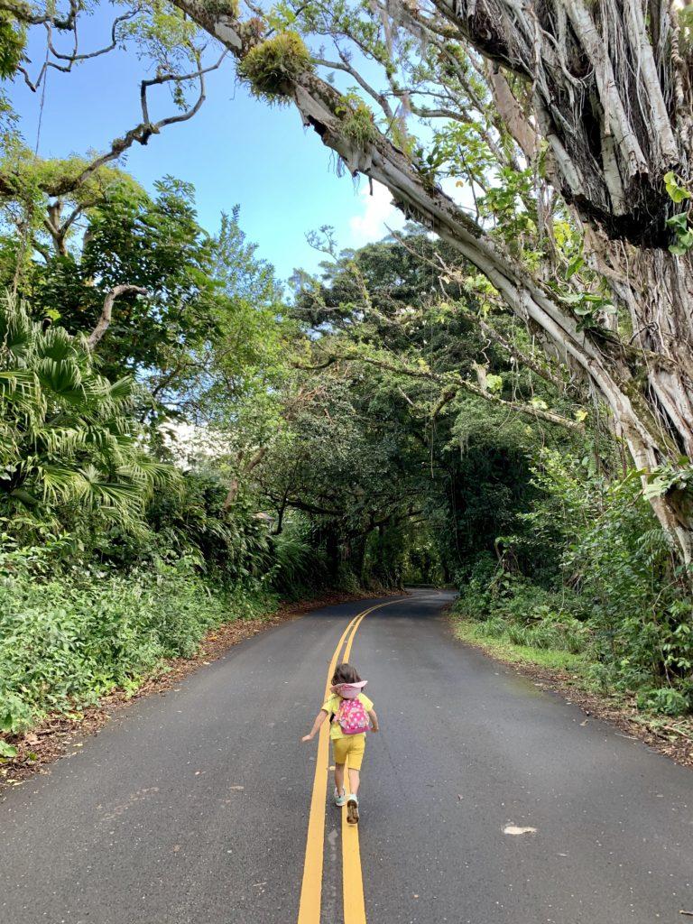 大きな木のトンネルで覆われたドライブの真ん中を走る娘