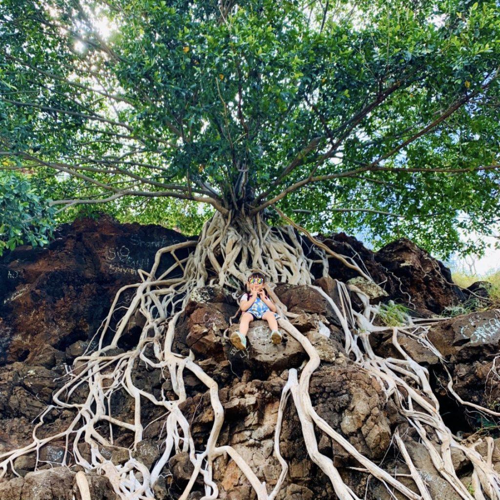 神秘的な木の根元にのぼった娘