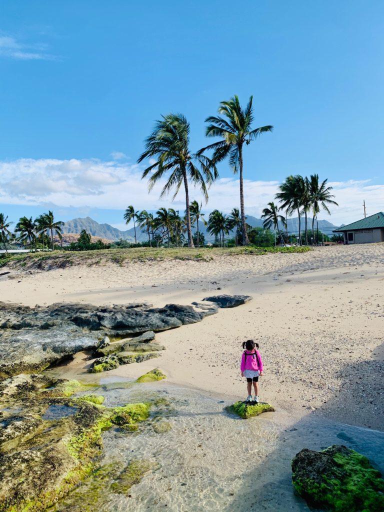 マイリポイントビーチパークの岩礁 コケが生えており滑る