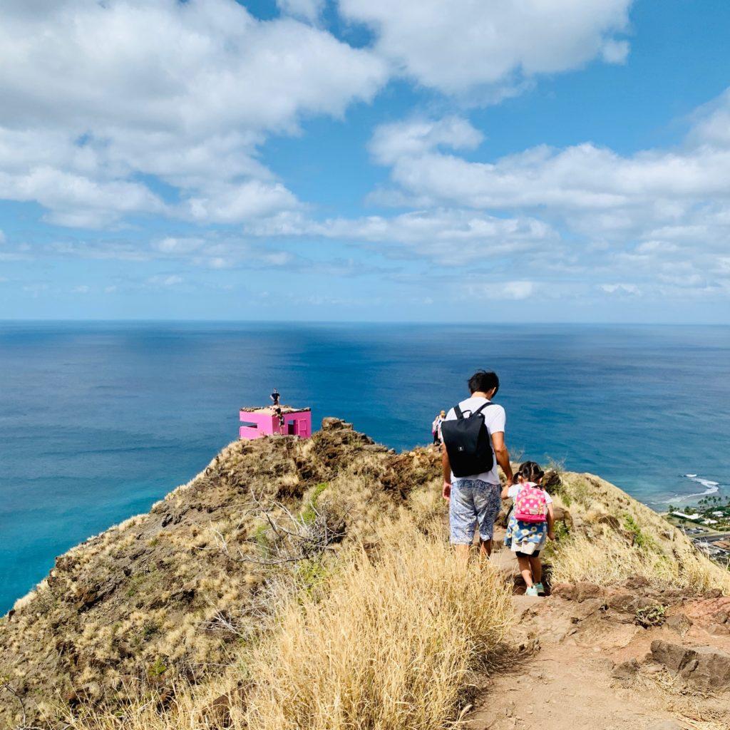 4つめのピルボックスから撮影したピンクピルボックス 山と尾根道、ピンクピルボックスが写り、背景には海が広がる