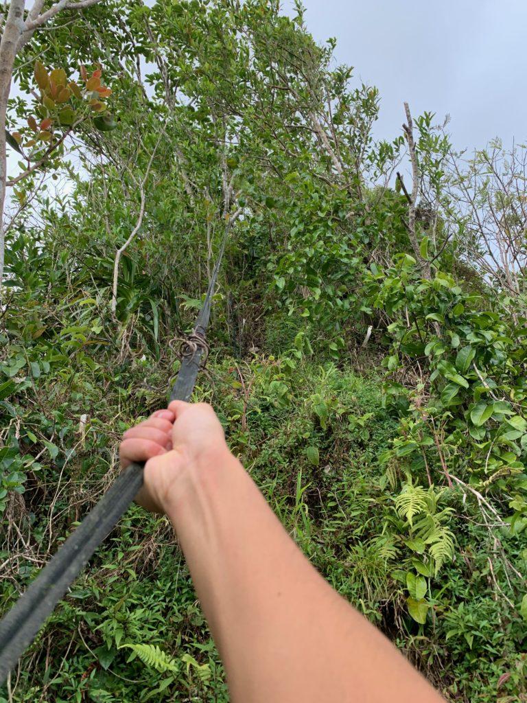 ロープの角度がかなり急になってきている。 ロープの先は植物に飲み込まれ見えなくなるほど植物が茂っている