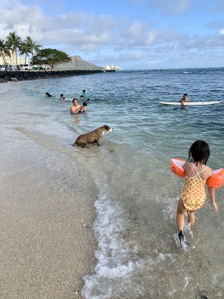 サーファーズビーチで遊ぶ家族と犬と娘 サーファーもいる