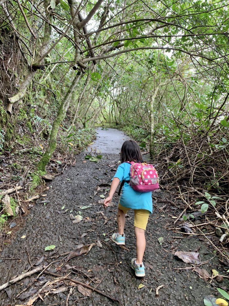 木のゲートの道を進む