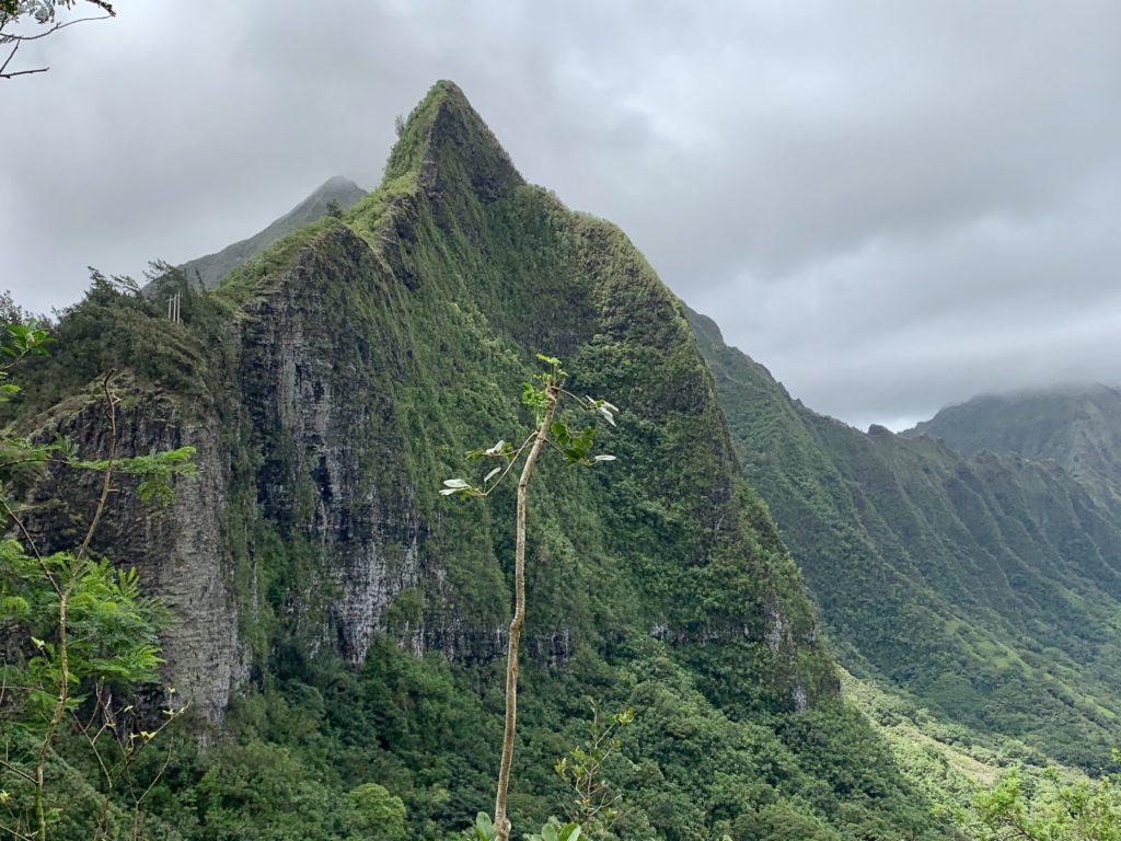 険しい尾根とコオラウ山脈