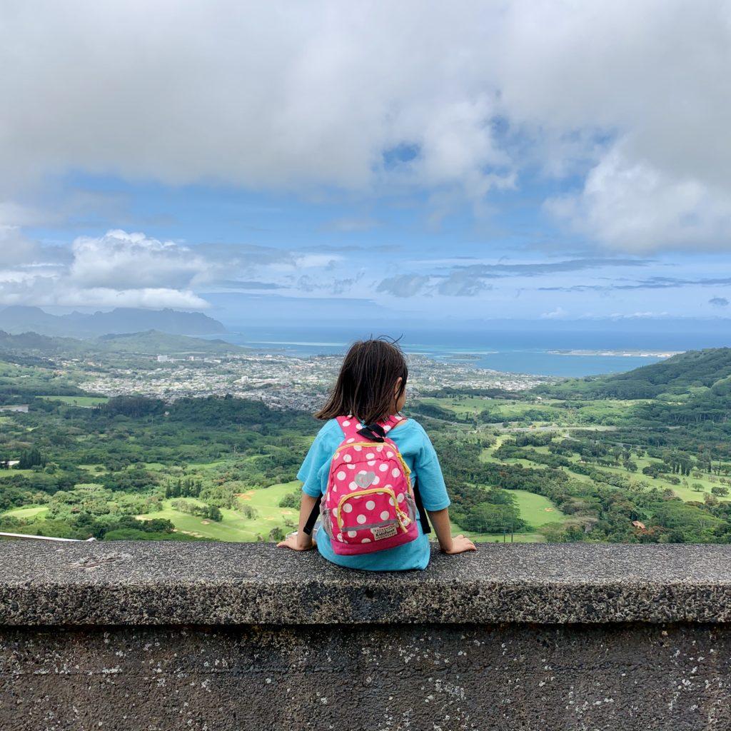 ヌウアヌパリ展望台からのカイルアの待ちの眺め