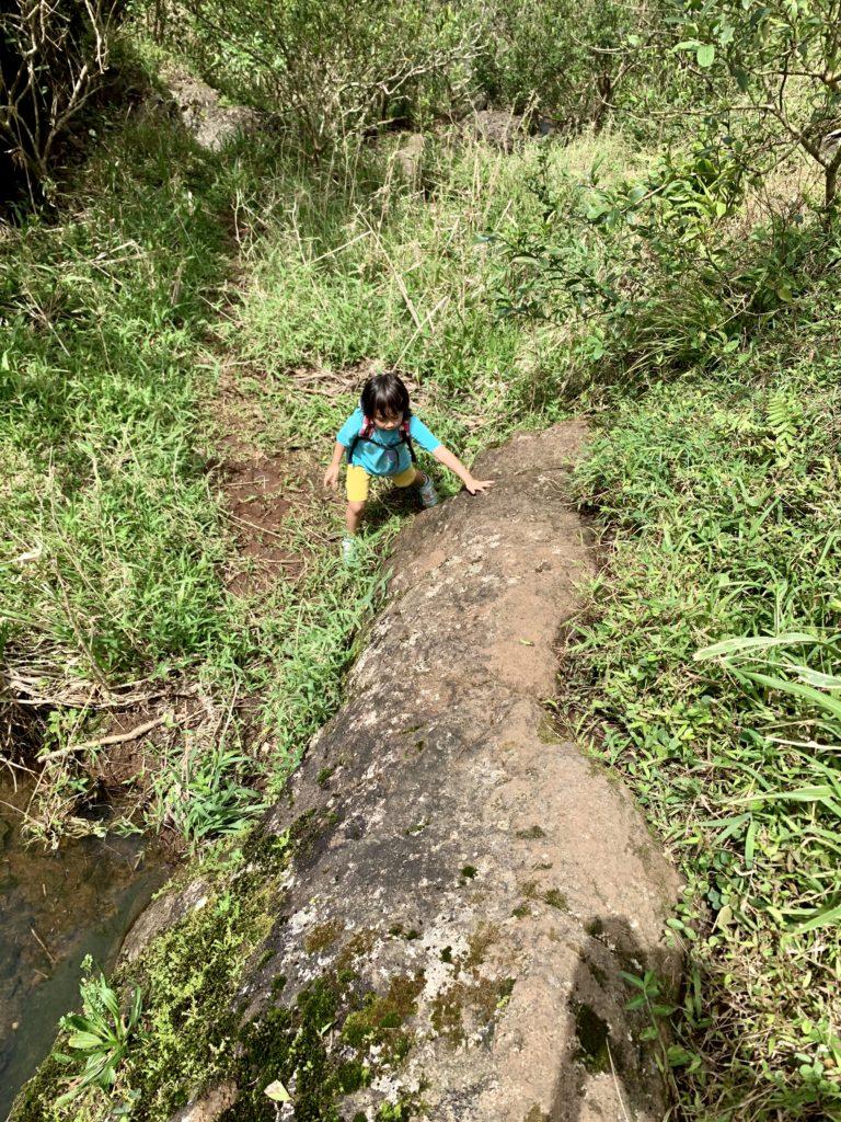 トレイルロードを歩く娘 岩が大きい