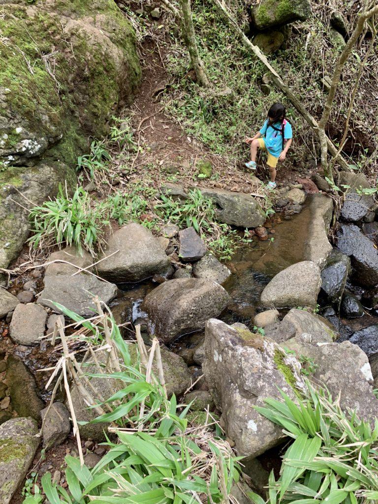 川の上の石を渡って狭い急斜面を進む道