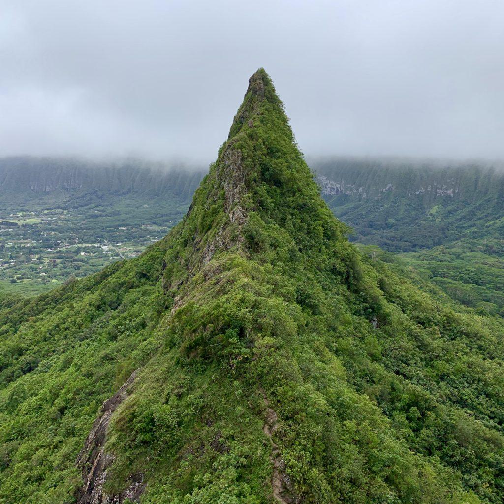 登りの尾根道は断崖絶壁