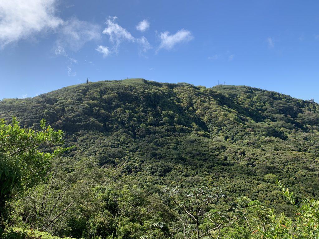 ヌウアヌトレイルからの眺め