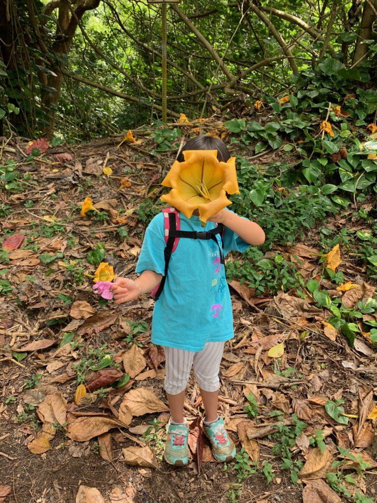 娘の顔より大きな黄色い花